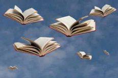 Books_in_flight